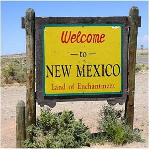 new mexico marijuana